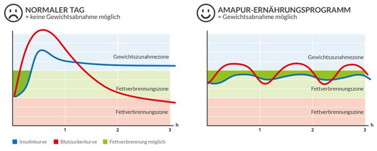amapur testsieger diät sorgt für einen konstant niedriger insulin- und blutzuckerspiegel amapur testsieger
