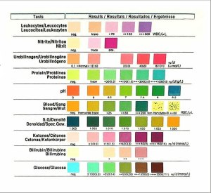 Gesundheitstest für 10 Indikatoren 100 Stück mit Referenzfarbkarte