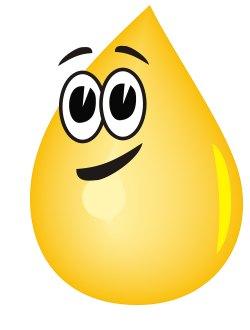 Golo-Diät - Leinöl als Stoffwechselturbo