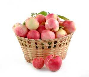 Power Apfelessig Diät mit einem Hausmittel apfelessig diät